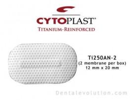Ti-250 Anterior Narrow (2 membranes per box)