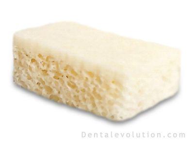 hueso dental: